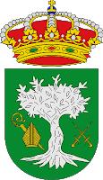 PLENO EXTRAORDINARIO DE ORGANIZACIÓN MUNICIPAL DEL AYUNTAMIENTO DE BORMUJOS